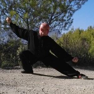 Fausto - Palma, : Kung Fu Tai Chi Chuan Chi Kung Personal