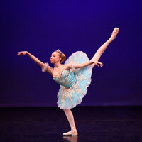 Award-winning Classical Ballet Dancer giving private or group ballet classes through zoom.