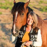 Build a healthy relationship with your Horse. Equine therapist with +30 years of experience