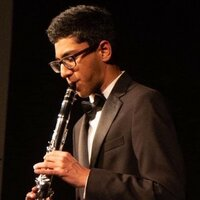 Clarinetist with 7 years experience giving music reading lessons for beginners online through Zoom