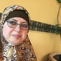 Credentialed Arabic teacher teaches Arabic to students in primary, middle school, high school and college in and around San Leandro. Meeting place would be a convenient public library.