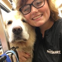 I'm a dog groomer and I love teaching about dogs and anything that has to do with dogs