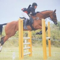 Dressage and Show Jumping Coaching, offering online or in person lessons, Devon