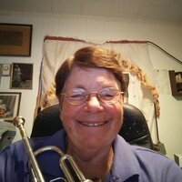 Professional Orchestral Trumpet Player with over 40 years of experience in teaching brass instruments & basic music.
