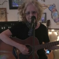 Singer/songwriter, recording artist and performer provides lessons to (group or individual) online or in person. I teach songwriting, acoustic guitar, hammered dulcimer, beginning piano and assist wit