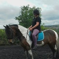 Six form student offering Horse riding lessons for all disciplines and all abilities